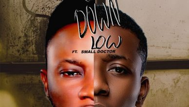 Adol Ft Small Doctor - Go Down Low